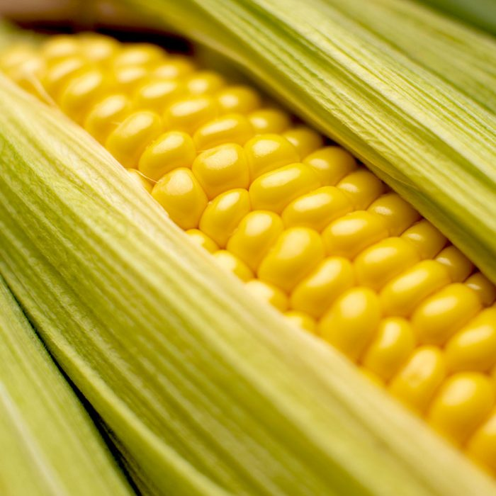 Corn Toy Fill